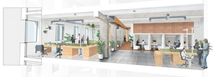 illustrated cross section showing workstations to the left and hot desks and white framed booths to the right, as well as lots of plants and bio-based materiality