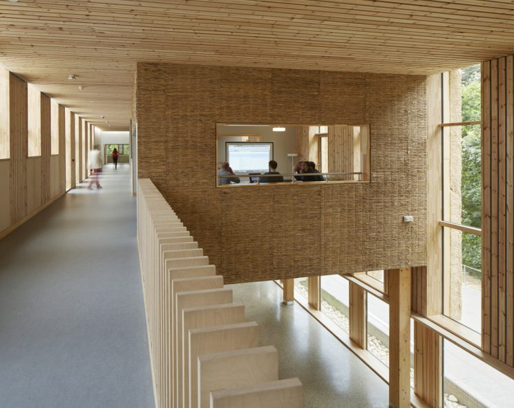 people in a seminar room inside a building with lots of natural daylight and all wood interior materiality