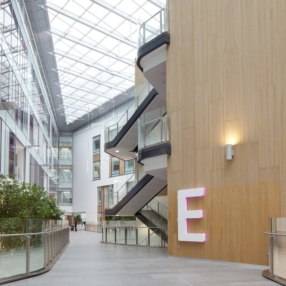 triple-height hall and stairs in a hospital filled with natural light from a skylight, and a light wood circulation volume with a 5-foot high letter E